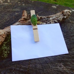 Decorative Clothespins&Gift Tags