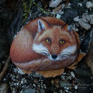 Fox (medium)